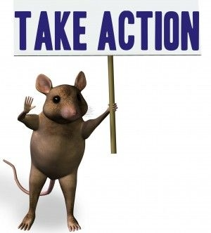 take action mouse.jpg